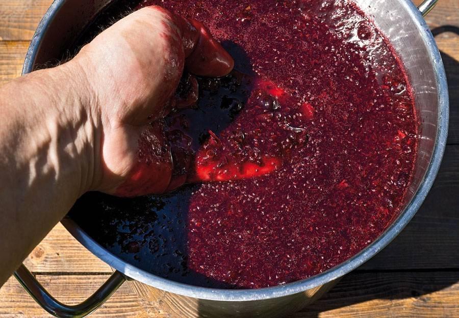 Как в домашних условиях сделать вино из черной смородины