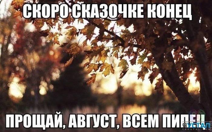1408211636 fotoprikoly 015 36