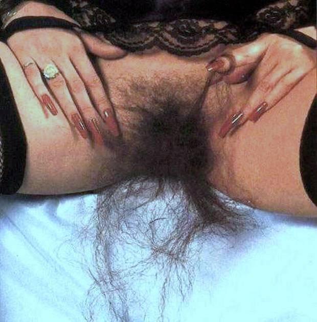 К чему снятся Волосы во сне  по 90 сонникам! Если видишь