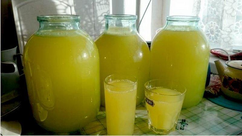 Как сделать 1 литр сока 874