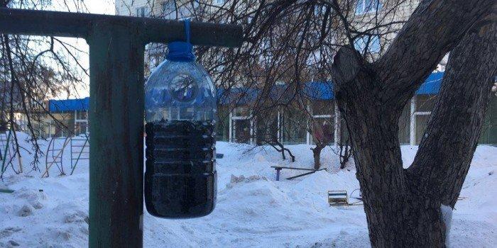 Los residentes de Omsk instalaron un alimentador para Gopnik en el patio