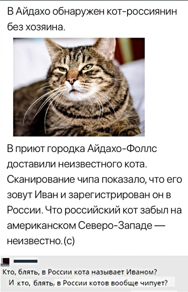 1578837913_kommentarii-iz-socialnyh-sete