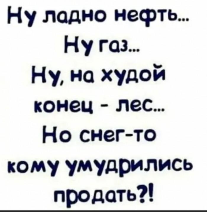 1579012294_13795810.jpg