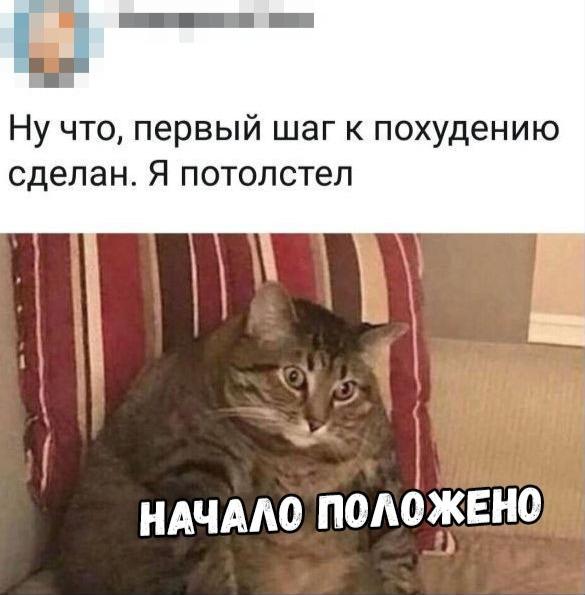 1579083496_13796440.jpg