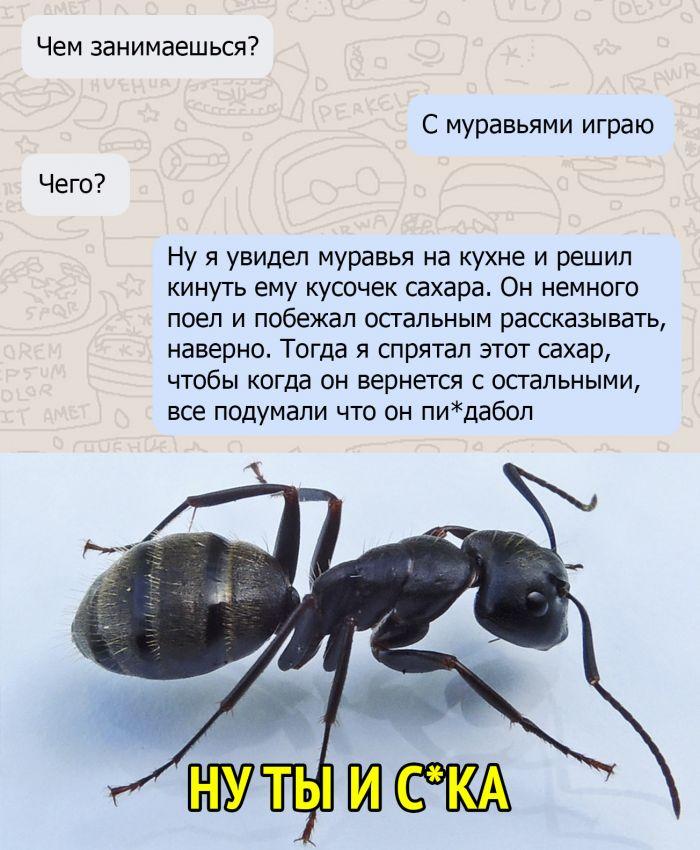 1578837898_kommentarii-iz-socialnyh-sete