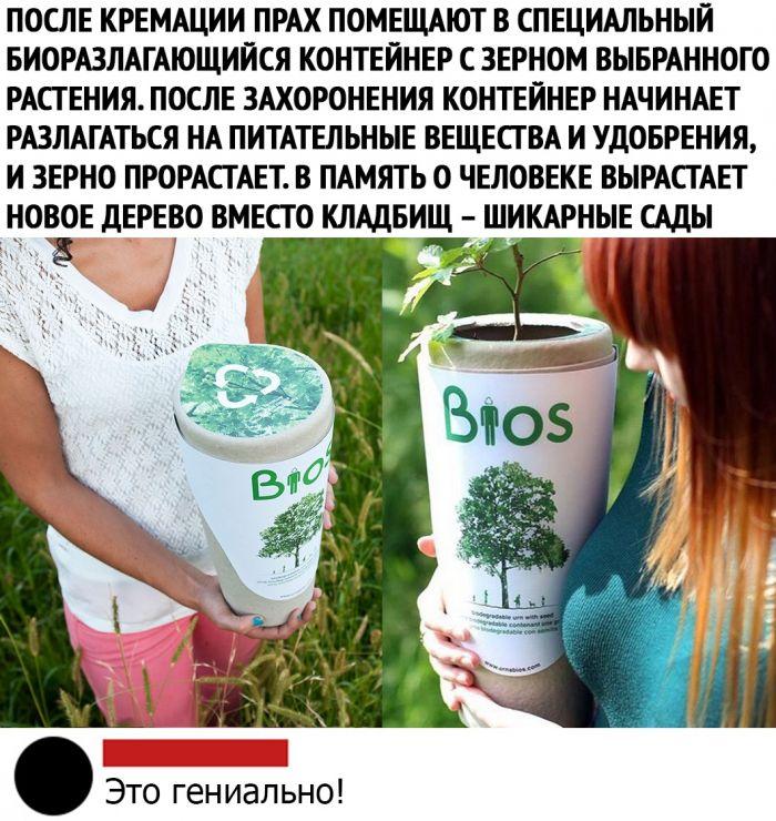 1578837947_kommentarii-iz-socialnyh-sete