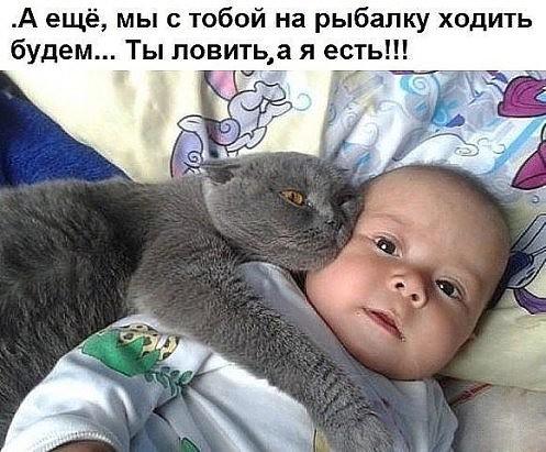 1584329213_14031675.jpg
