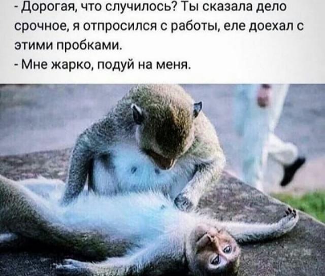 1584329279_14035978.jpg