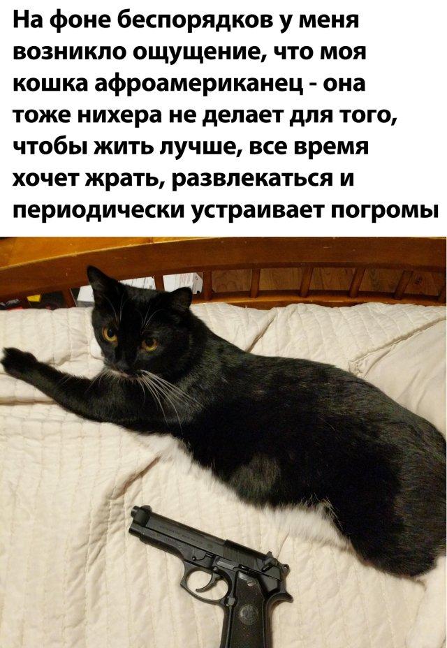 1591845120_kartinki-42.jpg