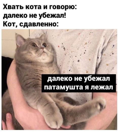 1591845130_kartinki-10.jpg