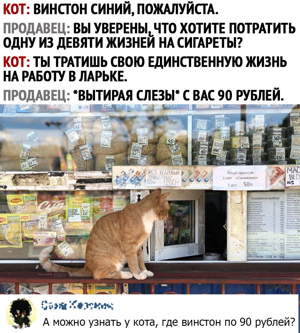 1593339318_kommentarii-iz-socialnyh-setej-3.jpg