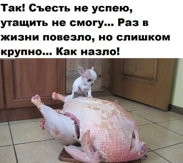 1593512363_14453251.jpg