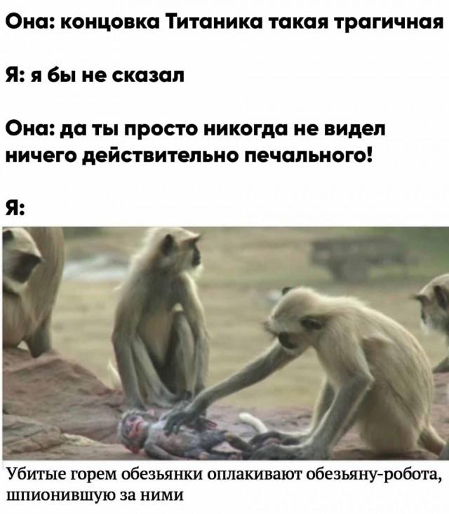 1593512433_14453281.jpg