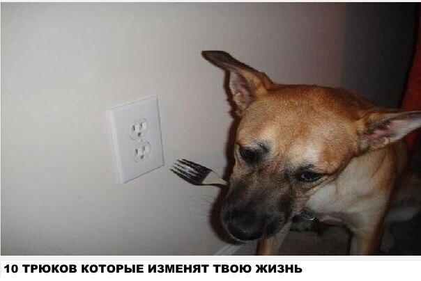 1593512448_14453261.jpg