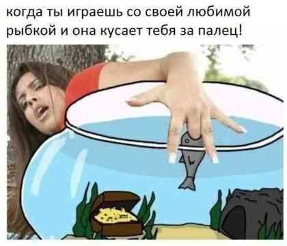 1595763351_14546861.jpg