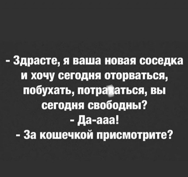 1595763378_14546872.jpg