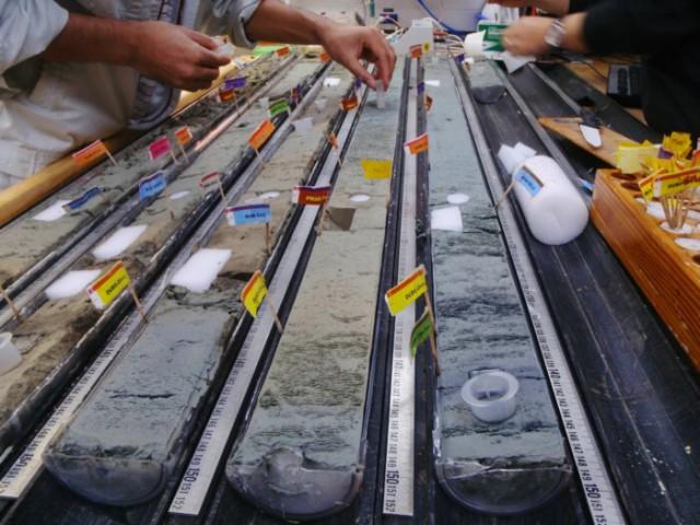 Учёные из США «оживили» древние микробы возрастом более ста миллионов лет С миру по нитке