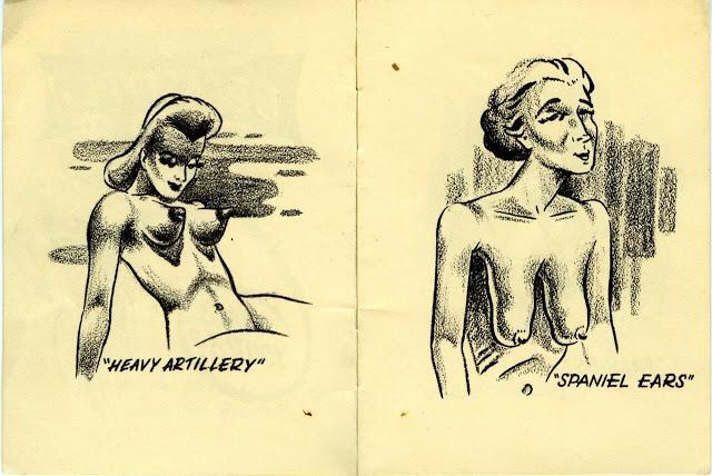 Breastypes — возмутительный гид по женской груди из 40-х С миру по нитке