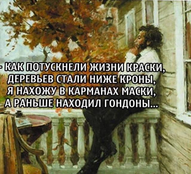 1604227209_14833835.jpg