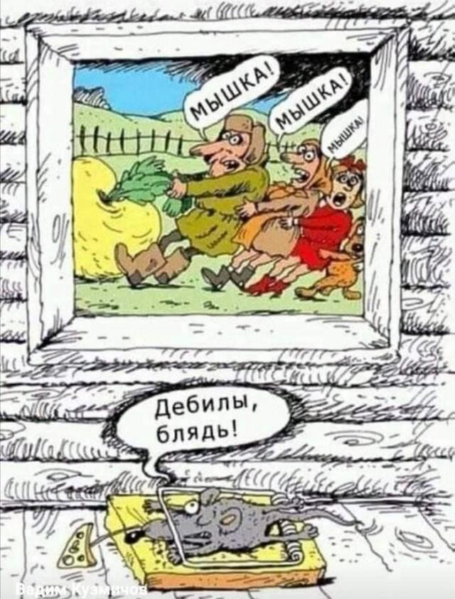 Яркий юмор для души Юмор