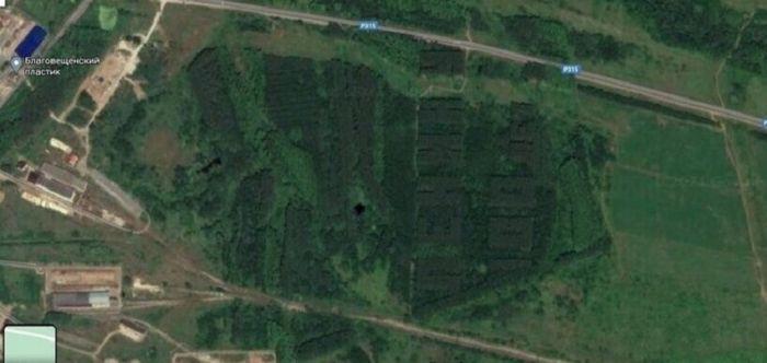 1619349214 v sssr sozdavali lesa v forme slov 4