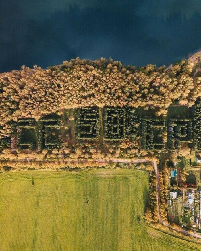 1619349222 v sssr sozdavali lesa v forme slov 2