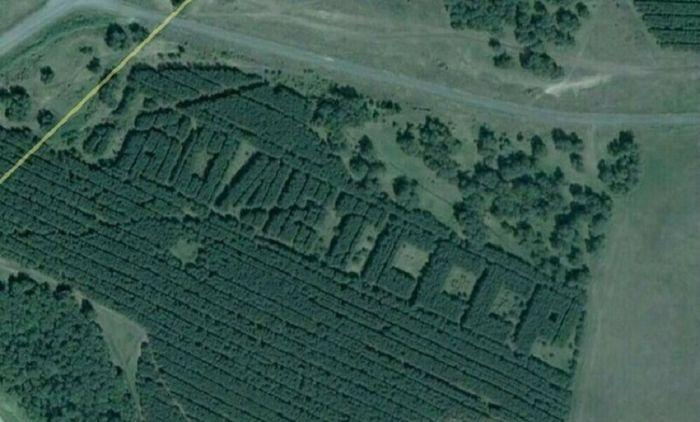 1619349253 v sssr sozdavali lesa v forme slov 8
