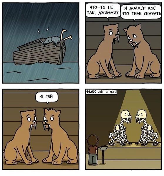 Большая подборка хорошего юмора в картинках Юмор