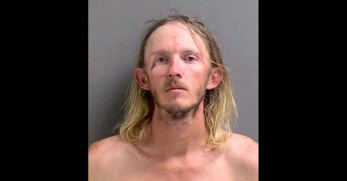 Мужчина из Флориды избил аллигатора и пытался закинуть его на крышу бара. Он утверждает, что хотел «преподать рептилии урок» С миру по нитке